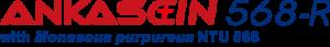 logo_ankasein568